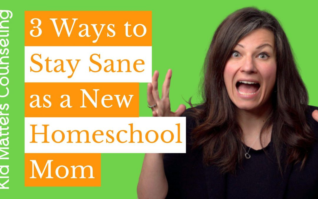 3 Ways to Stay Sane as a New Homeschool Mom